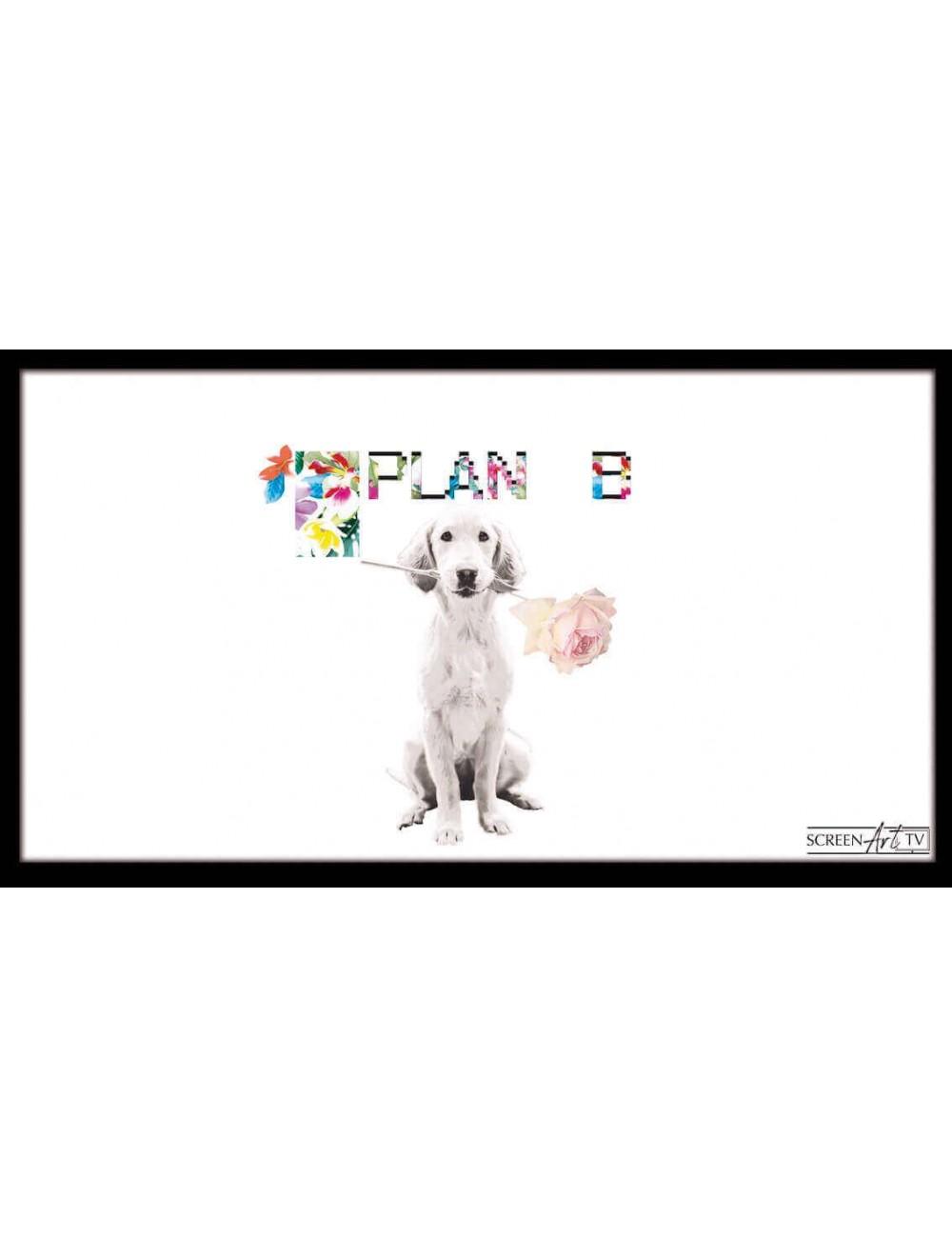 54 1-DOG PLAN B