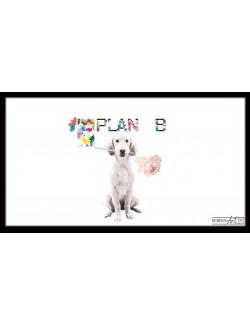 Nos Visuels - 54 1-DOG PLAN B