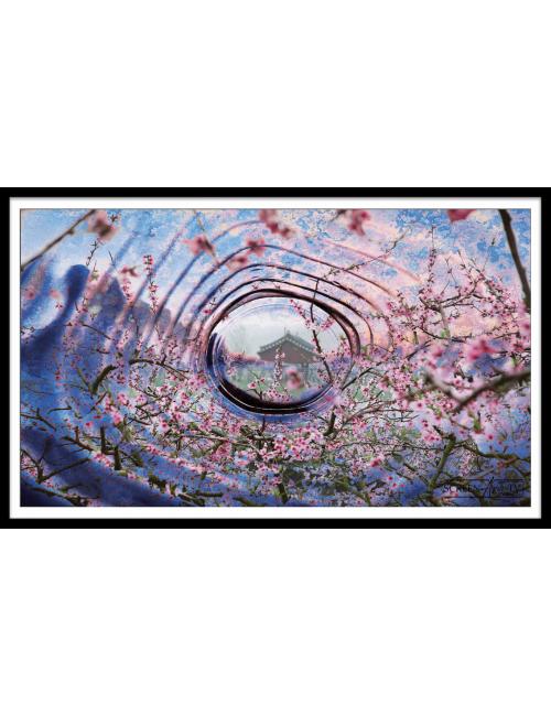 Nos Visuels - 110 1-JAPON FLEUR DE CERISIER