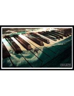173 1-PIANO SURF